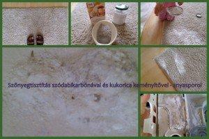 szőnyegtisztításanyasporol
